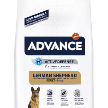 Advance German Shepherd